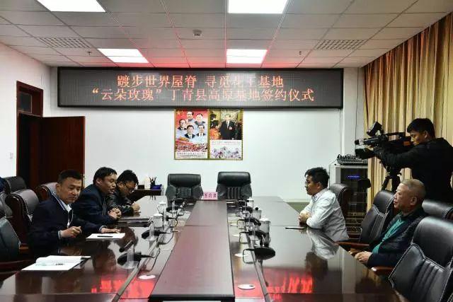 云朵玫瑰与丁青县政府签订试种协议