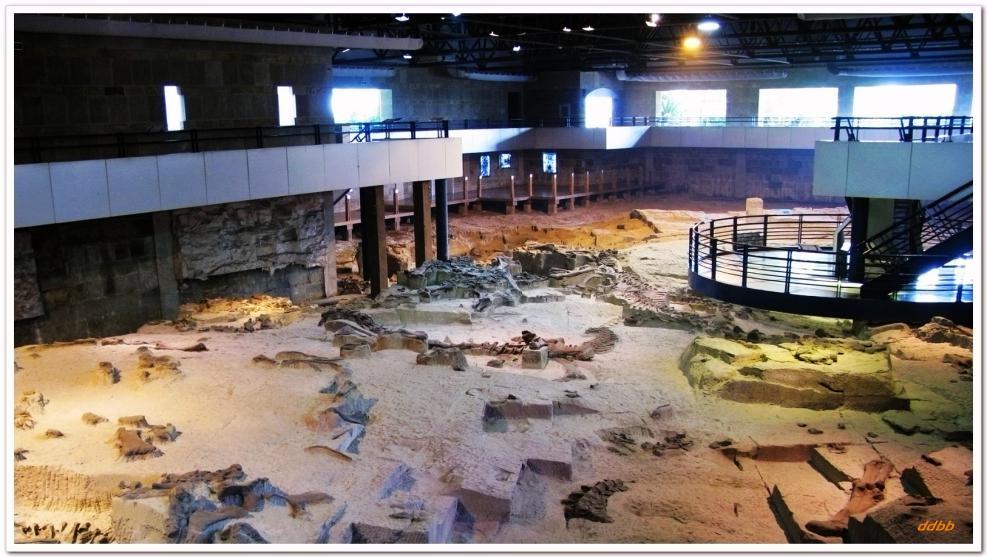 恐龙博物馆001