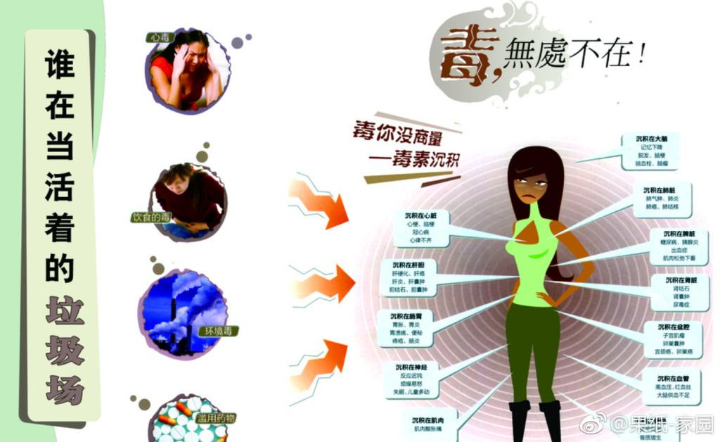 朱中豆的做法,迅速火爆娱乐圈女星都在吃-焦点中国网